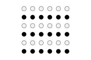 La maggior parte delle persone vede 3 file di cerchi neri e 3 file di cerchi bianchi